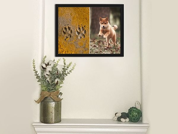 Frame-Pet's-Footprints